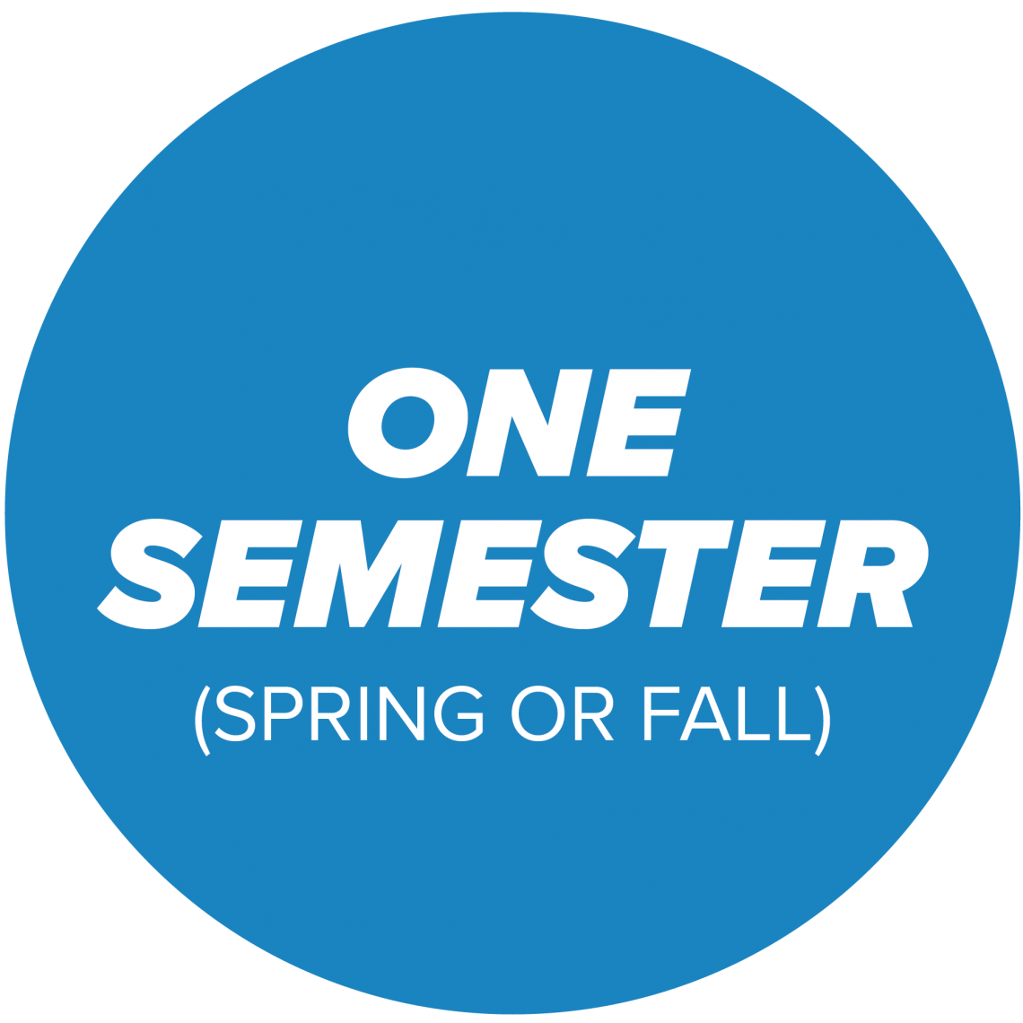 for fall or spring semester option
