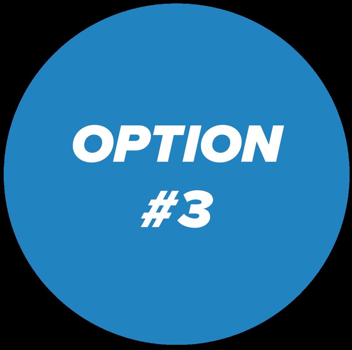 option #3