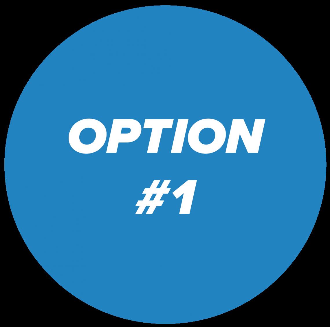 option #1