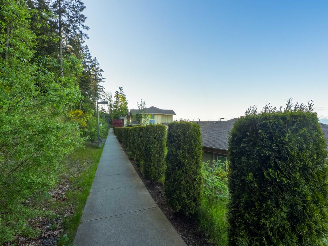 Pathway above viu residence